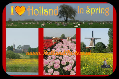 I Love Holland in Spring b hp 10 S